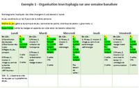 Exemples d'organisation et d'emploi du temps