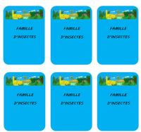 """Les cartes """"Famille d'Insectes"""""""